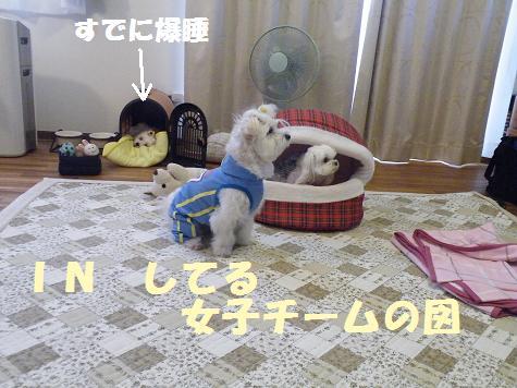 2009_07220121.jpg