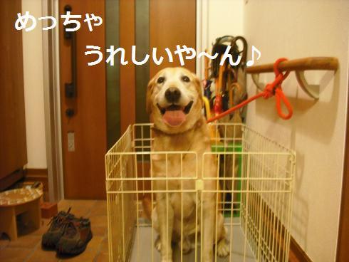 2009_102705.jpg