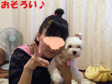 2009_111201.jpg