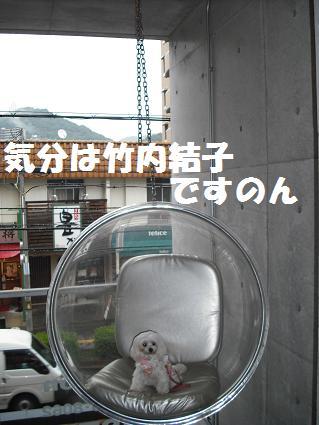 2009_111810.jpg