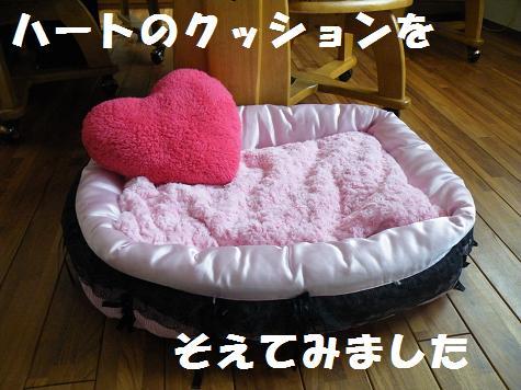2009_112112.jpg