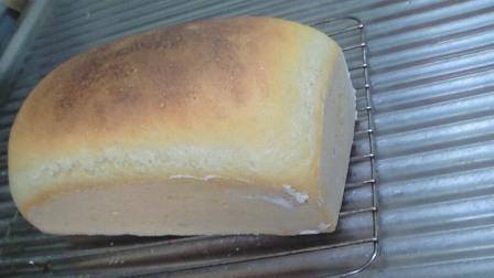 パン 焼き立て