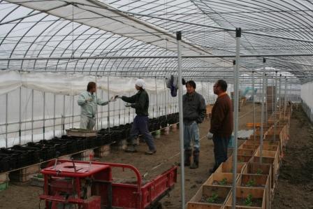 20110325農園作業風景 (2)
