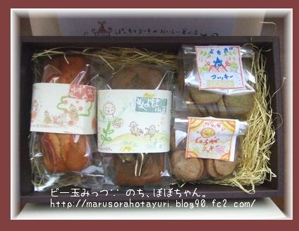 モラタメ 12/6 ぽっちり堂