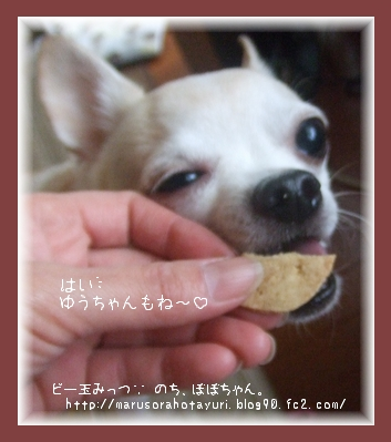モラタメ 12/6 ぽっちり堂 ゆうさん