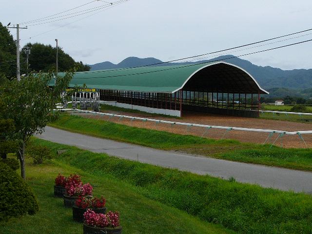 千代田牧場2