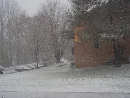 11-21-2008 snow day 002