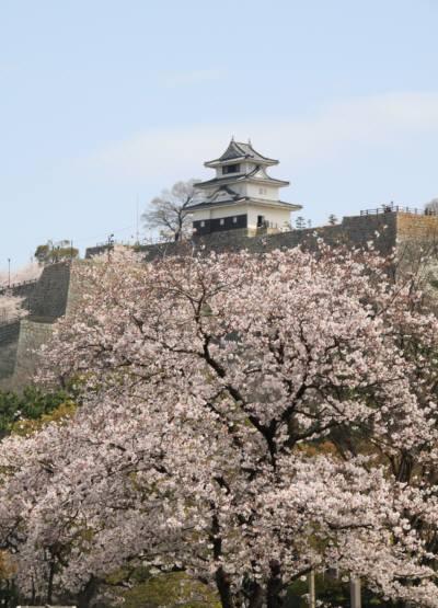 4.6.丸亀城2