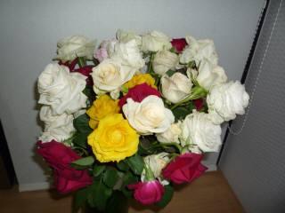 贈り物・薔薇