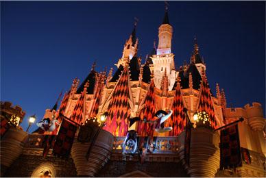 dis_castle.jpg