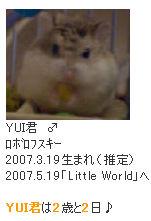 祝!YUI君、2歳♪