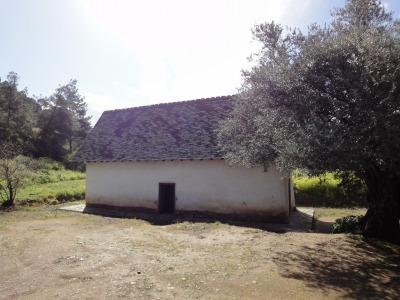 201002キプロスマルタA (198)