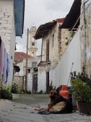 201002キプロスマルタA (234)