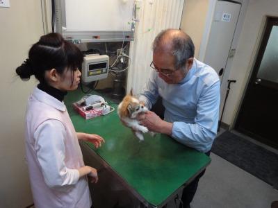 201003ワクチンとシャンプー (3)