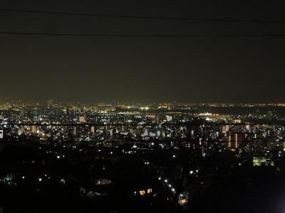 201003りんちゃんち (66)