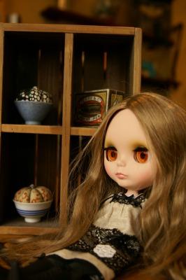 201003ブライスとチワワ (38)