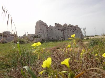 201002キプロスマルタB (43)