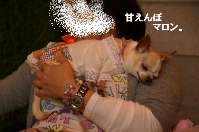 201004篠山 (80)