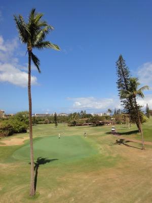 201004ハワイA (69)