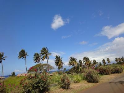 201004ハワイA (68)