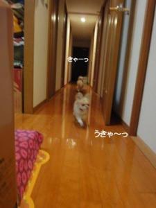 201004イタパリ7 (3)