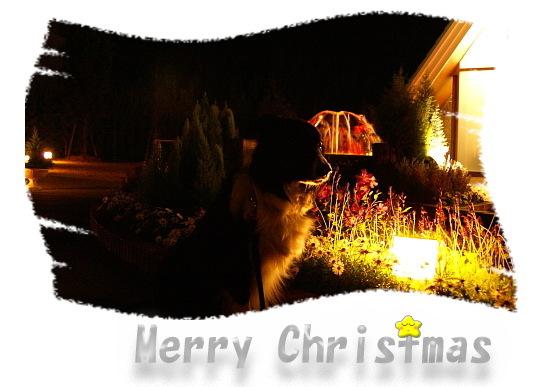 1224クリスマスカードB