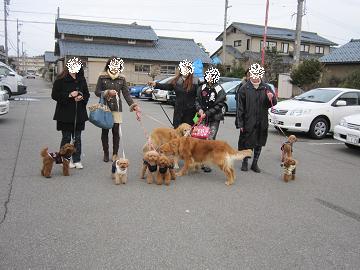 新年会お散歩1