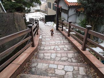 お散歩・嫁坂