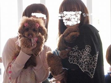 2010 04 29_福井ドッグカフェ_1109