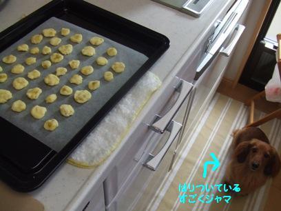 料理とかって人に見られてると緊張してやりにくいよね。めったに料理なんてしないけど(^m^;)