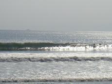 20090917-6.jpg