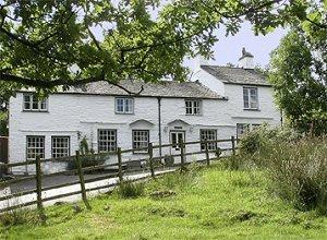 birch house 4