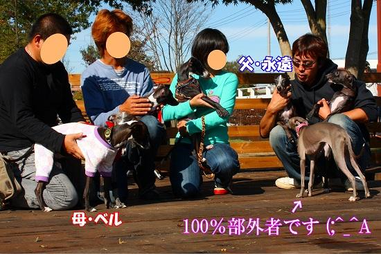 1_20091128154923.jpg