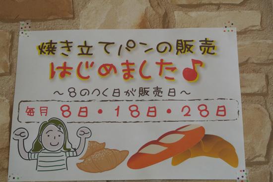 DSC_0911_2.jpg