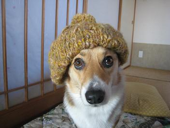 アッタカ帽子