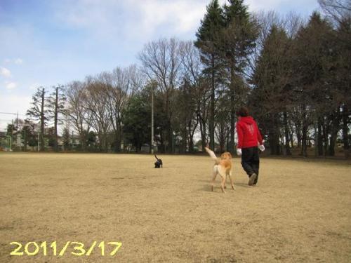 2011317IMG_2919.jpg