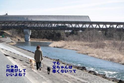 IMG_1275_20110304002244.jpg