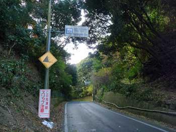 20111231013.jpg