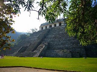 palenque 8