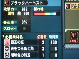 龍の斧*1