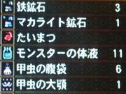 虫退治*5(11個Get)