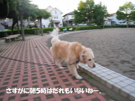 IMG_2645 (0)