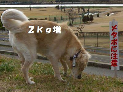 CIMG1786.jpg