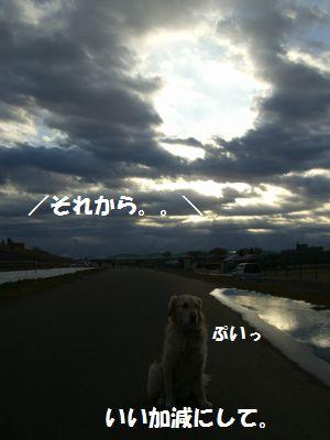 CIMG1800.jpg