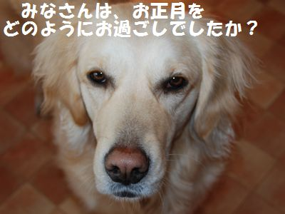 CSC_0010.jpg