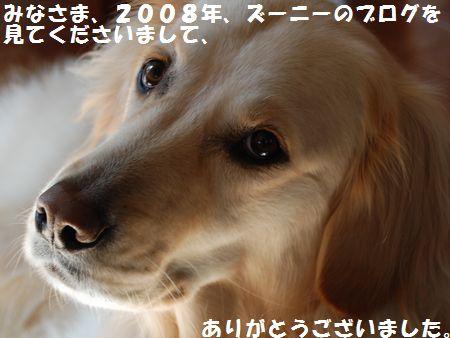 CSC_0028.jpg