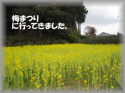 IMG_0166.jpg