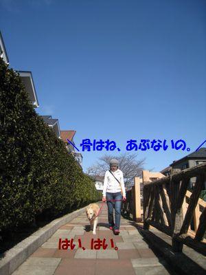 IMG_0787.jpg