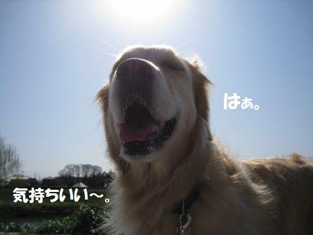 IMG_0875.jpg