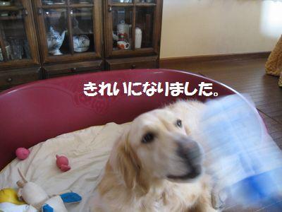 IMG_1039.jpg